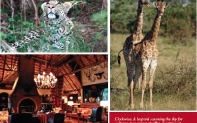 Claudia's Africa Trip