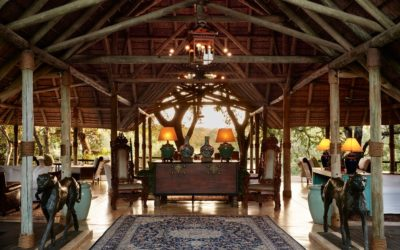 Africa food and Accommodations
